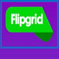 image of flip grip